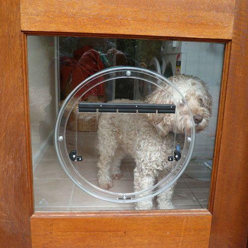 dog doors u0026 cat doors